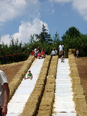 Slides, pumpkins, apples, and family fun at Weber's Cider Mill and Farm Market in Parkville, Maryland.